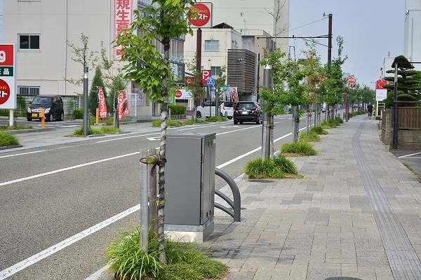 D71_1601.jpg