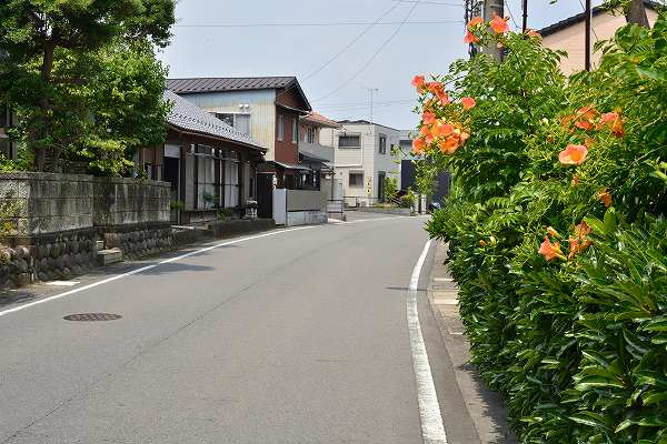 D71_1640.jpg
