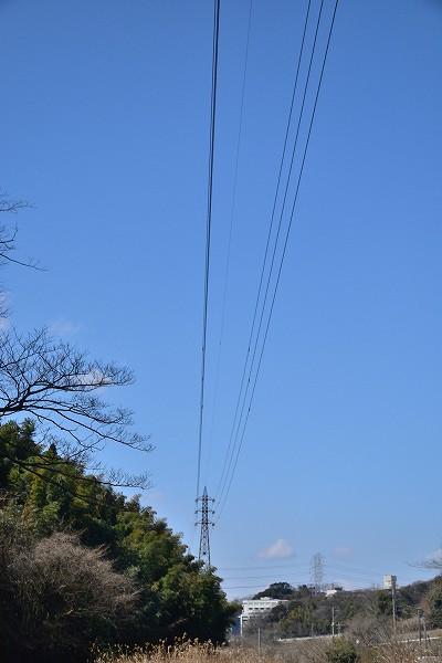 D71_9764.jpg