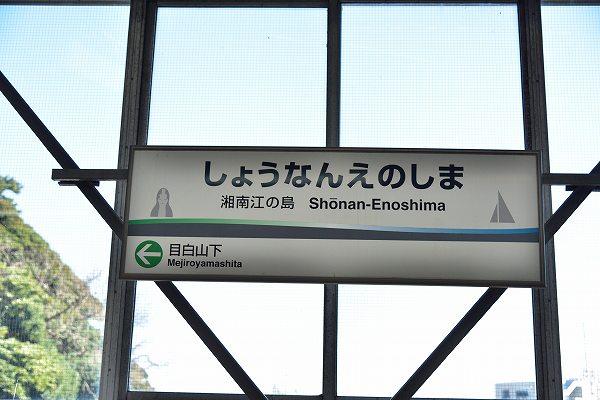 D81_3010.jpg