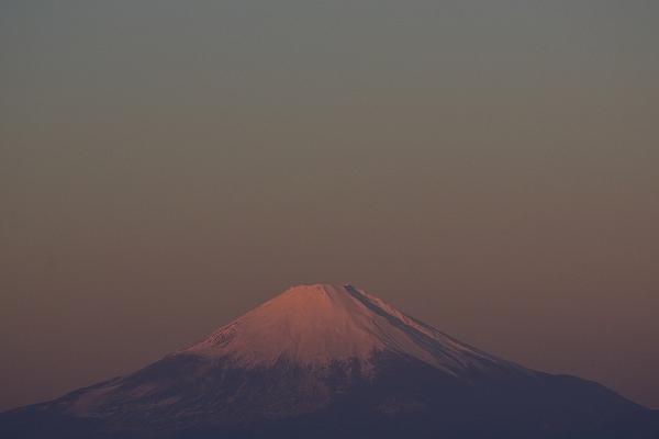D71_8686.jpg