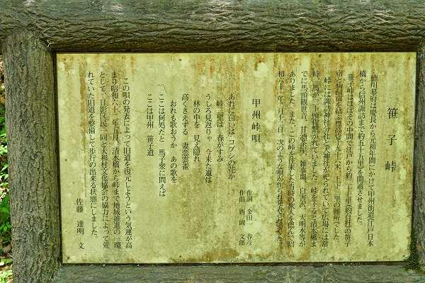 D75_4719.jpg